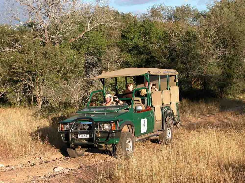 Lodge Open Safari Vehicle 2 (Nissan Hardbody converted)